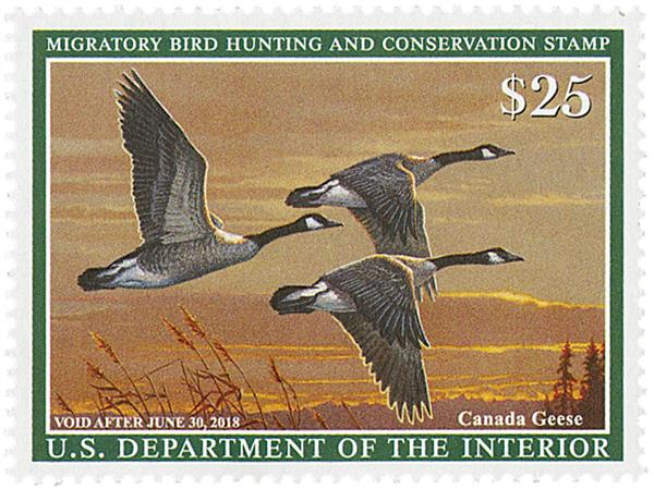 2017 $25 Canada Geese Hunting Permit