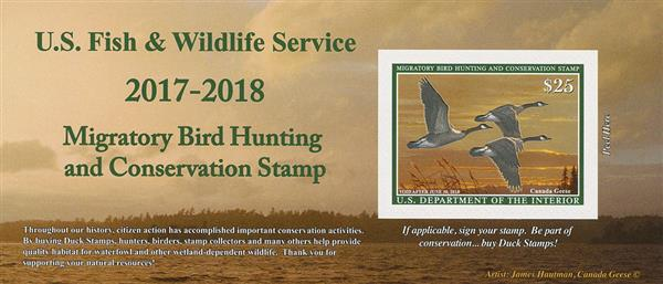 2017 $25 Canada Geese Hunting Permit s/a