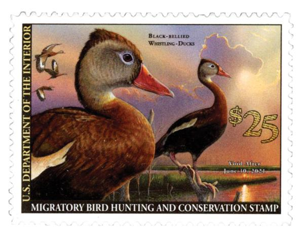2020 $25 Black-Bellied Whistling Duck Hunting Permit
