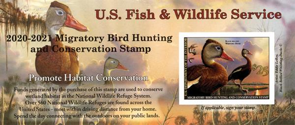 2020 $25 Black-Bellied Whistling Duck Hunting Permit s/a