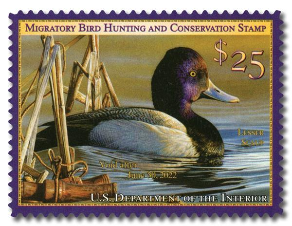 2021 $25 Lesser Scaup Hunting Permit