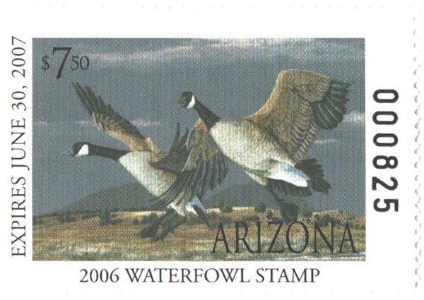 2006 Arizona State Duck Stamp