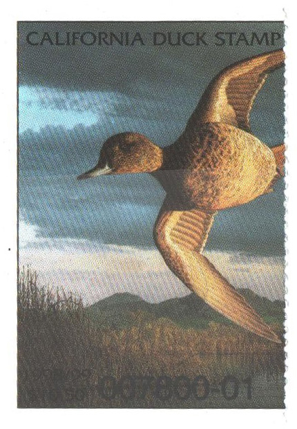 1998 California State Duck Stamp