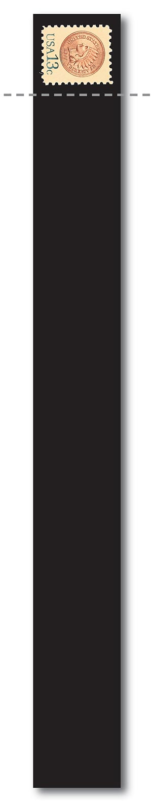"Scott Mount 215 x 20mm (5.46 x .79"") US 19th Century Horizontal Coil  22 pack"