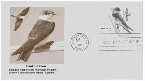 2013 46c Bank Swallow St. Env.