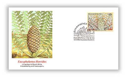 1996 NY Endangered Species Encephalartos