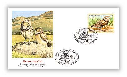 1998 S7 Endangered Species-Burrowing Owl