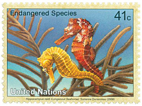 2008 41c UNNY Endanger-Longsnout Seahors