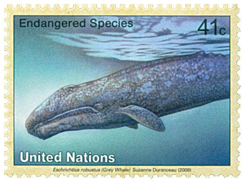 2008 41c UNNY Endanger-Grey Whale