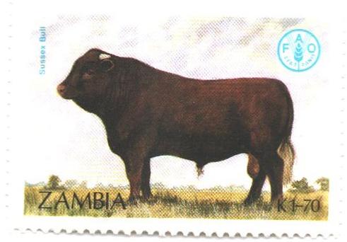 1987 Zambia