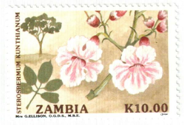 1991 Zambia