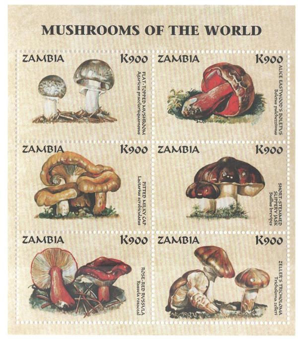 1998 Zambia