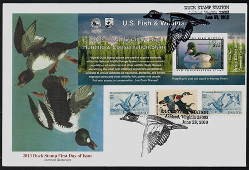 2013 $15 Common Goldeneye s/a