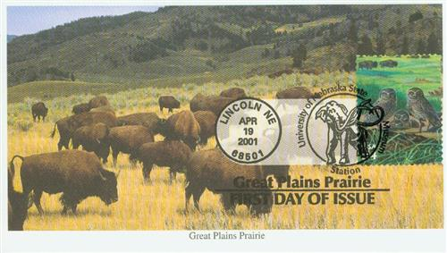 2001 34c Great Plains Prairie: Burrowing Owls and Buffalo grass