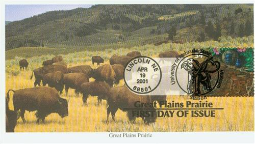 2001 34c Great Plains Prairie: Plains Spadefoot and Beetles